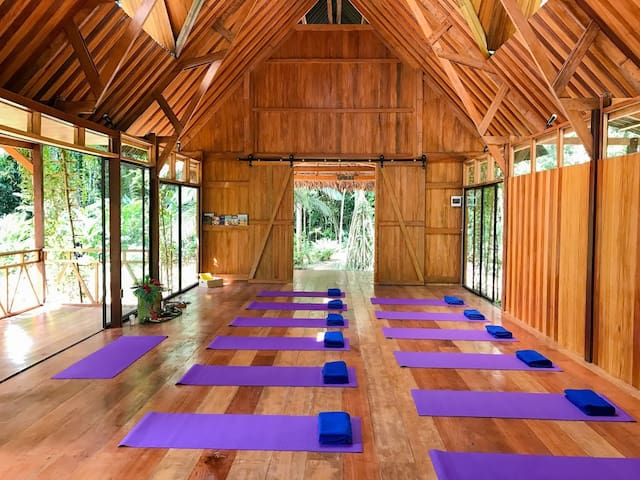 Beautiful & Peaceful Yoga Centre in the Jungle !