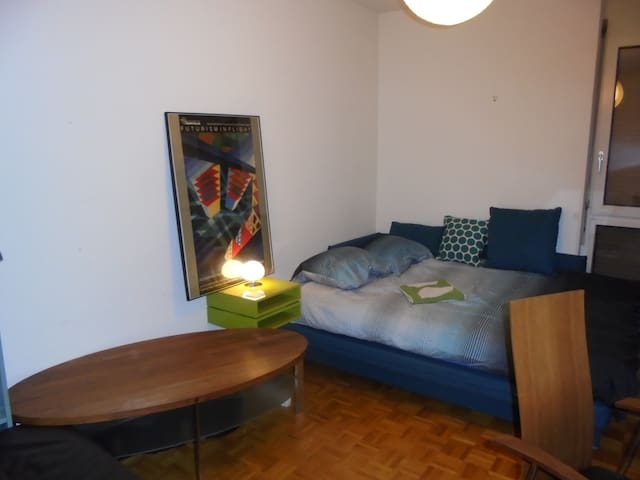 Comfort and Style - Carouge, Geneva - Carouge - Pis