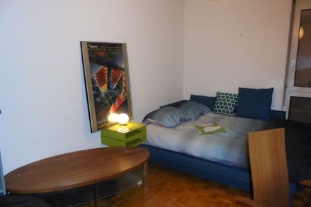 Comfort and Style - Carouge, Geneva - Apartmen