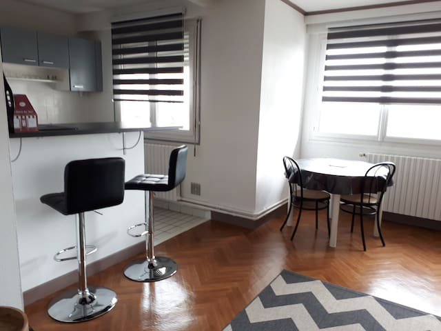 Appartement proche OIEAU et centre ville