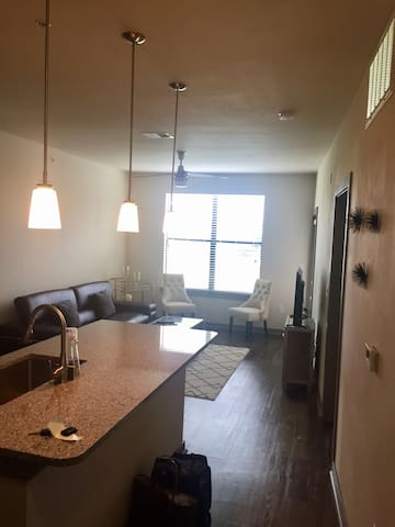 1B/1B Alamo Heights - San Antonio - Apartament