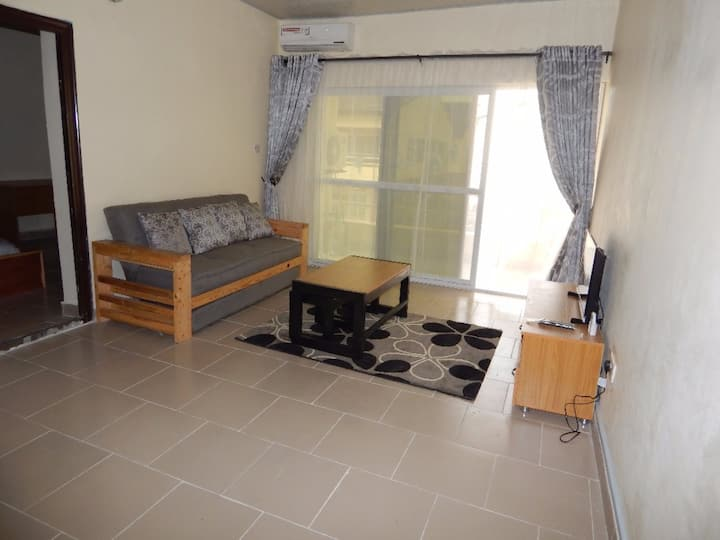 Furnished one bedroom apartment behind LBS.