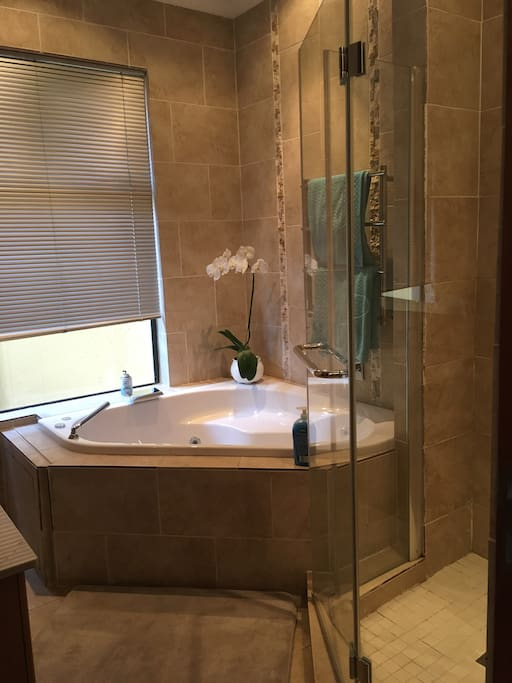 The Ensuite Bathroom with Jet Bath and Shower  for the Aqua - Blue room