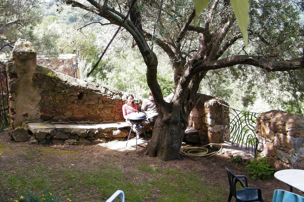 Verveine studio calme fra s piscine cologique flats for Piscine ecologique
