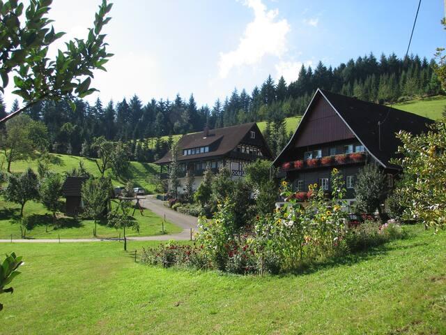 Fiegenhof 5