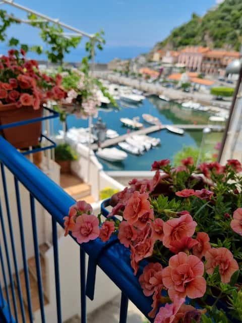Grazioso appartamento sul porto di Maratea