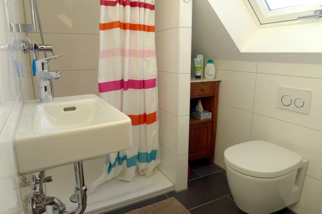 Blick in das Bad mit Dusche und WC. Getrennt vom Wohn-und Schlafzimmer durch eine Schiebetür.