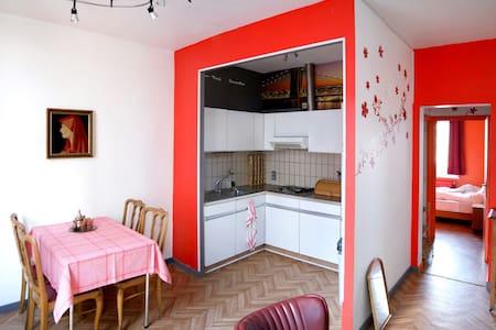 Charming apartment in Marolles - Brussel - Apartment