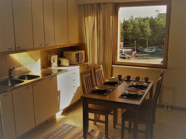 Large  79 m2 2 br apartment 7 km from Vaasa centre