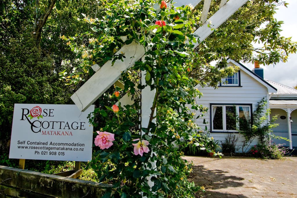 rose cottage matakana houses for rent in matakana