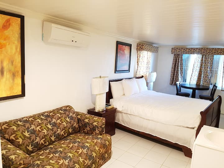 Golden Palm B & B King Suite with Ocean View