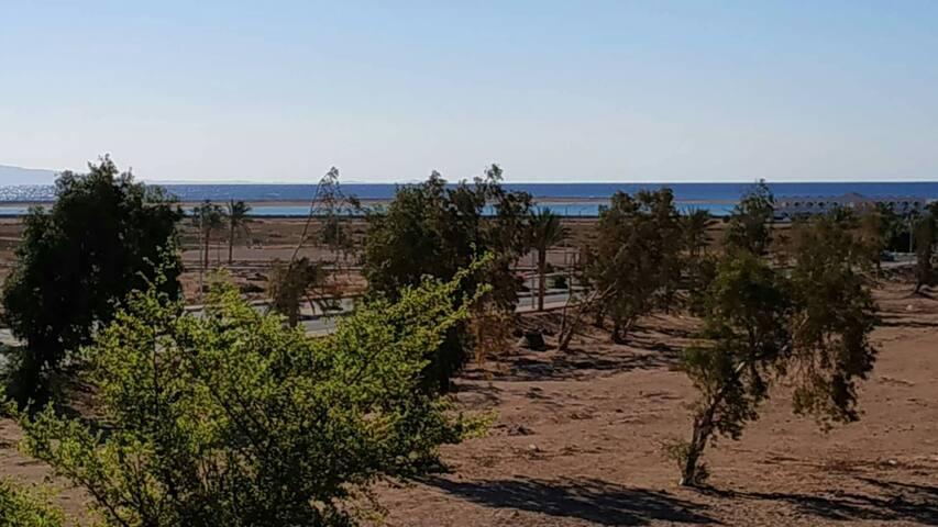 Dahab Lagona Flat