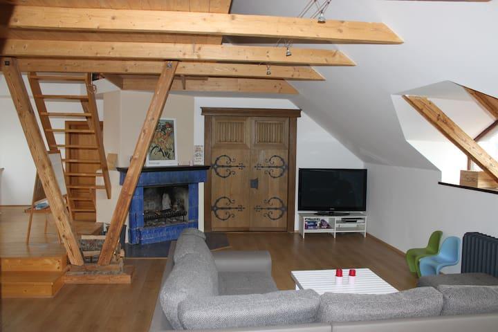 Pohled na obývací prostory s krbem + dveře do ložnice I.