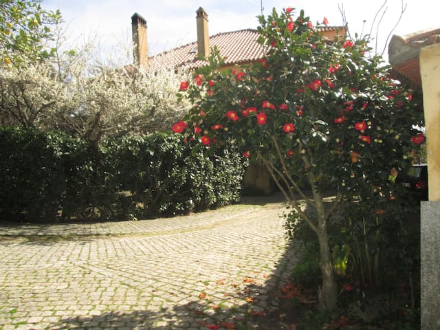 Quinta do Prado - Mangualde - Guesthouse