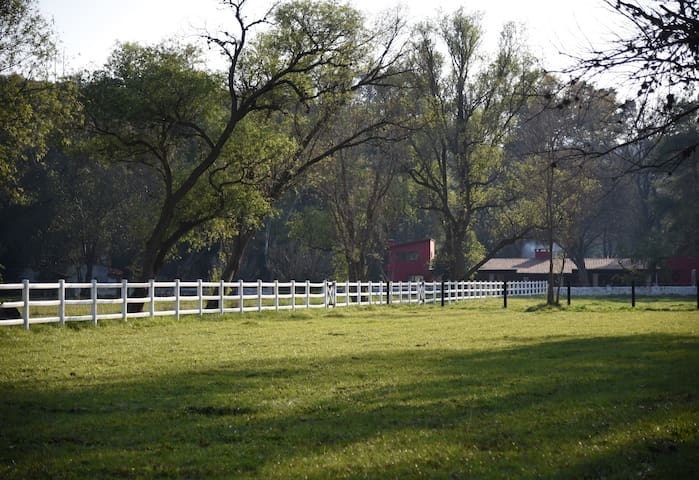 Cabaña de lujo en criadero de caballos