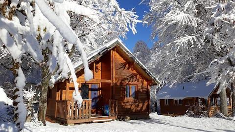 Chalet bois 4 à 6 personnes au cœur des Alpes