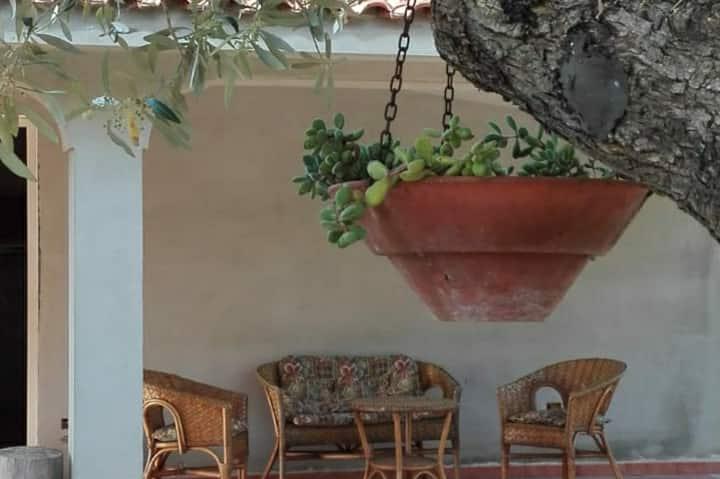 """""""I Girasoli"""" Casa rurale con vista a Oliena"""
