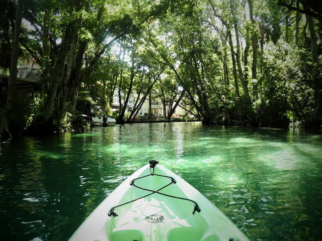 SEA COW RIVER HOUSE - KAYAKS AND CANOES INCLUDED! - Weeki Wachee - Huis