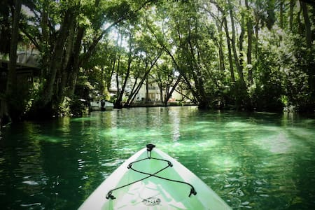 SEA COW RIVER HOUSE - KAYAKS AND CANOES INCLUDED! - Weeki Wachee