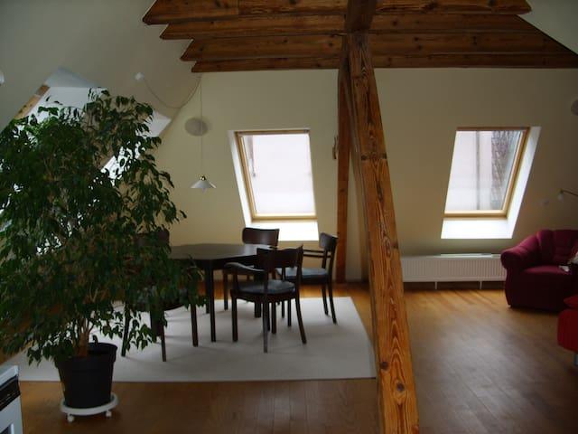 Außergewöhnliche Wohnung, zentrale und ruhige Lage - Kaiserslautern - Apartamento