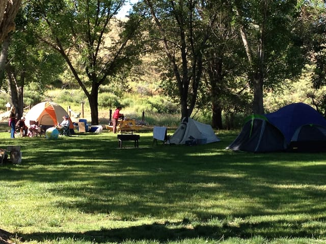 Tent site on route to Yellowstone w/shower, wifi