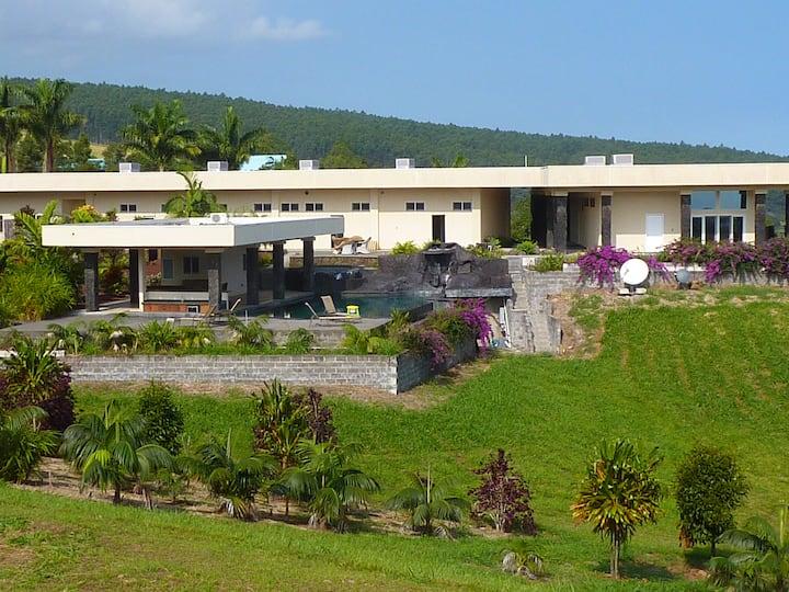 The Royal Palms Luxury Estate