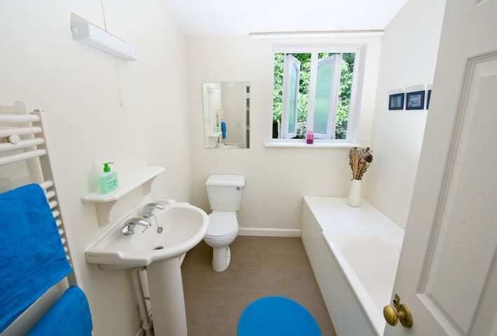 Amazing New Forest location - Sleeps up to 44! - Brockenhurst - Dom