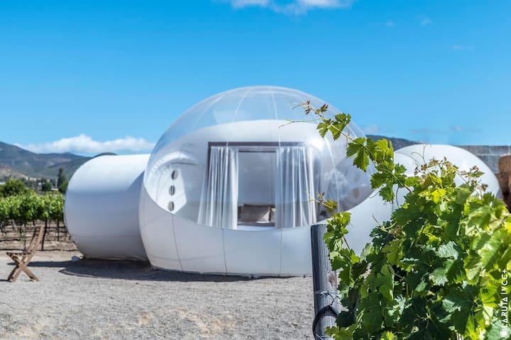 Campera Hotel-Bubble Suite 8