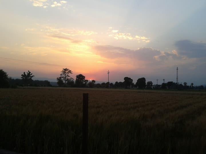 Countryside Aroma (Along Raja ji National Park)