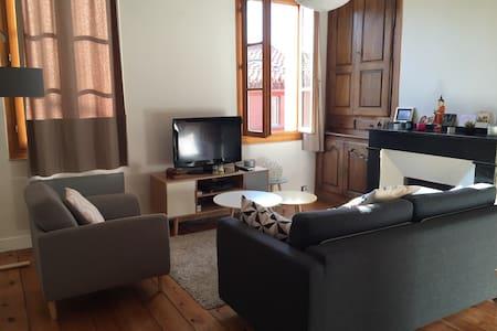 Appartement hypercentre Toulouse - Appartement