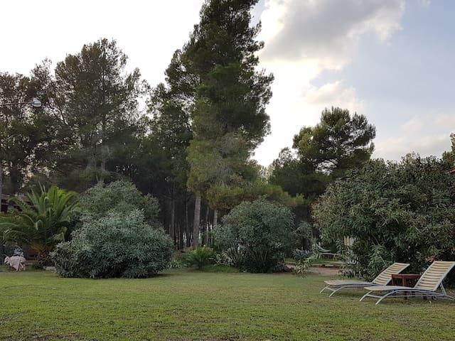 VILLA PARA GRUPOS EN PLENA NATURALEZA - L'Aleixar - Hus