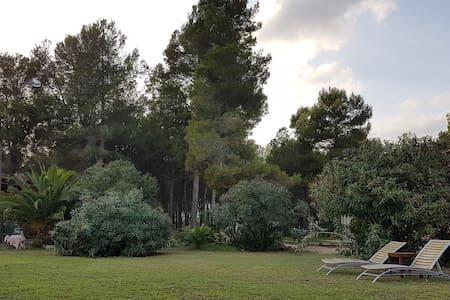 VILLA PARA GRUPOS EN PLENA NATURALEZA - L'Aleixar - Rumah