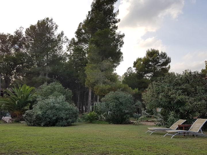Villa para familias con piscina en la naturaleza