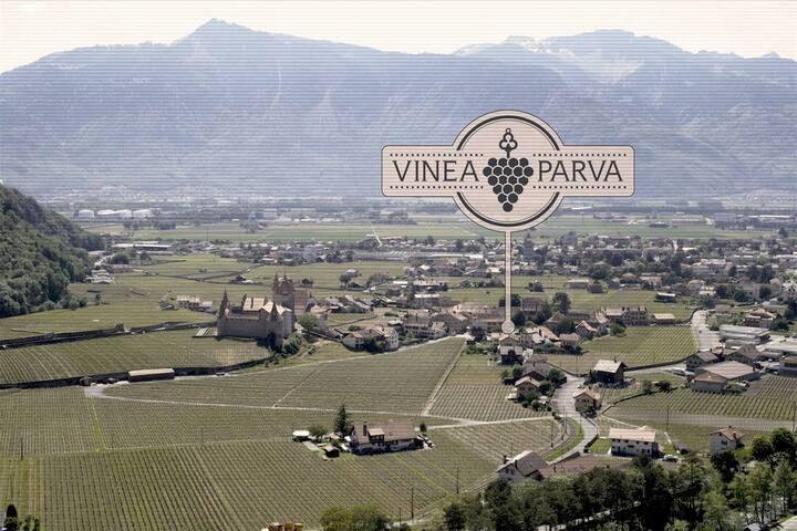 Localisation de la villa Vinea Parva à Aigle / Suisse