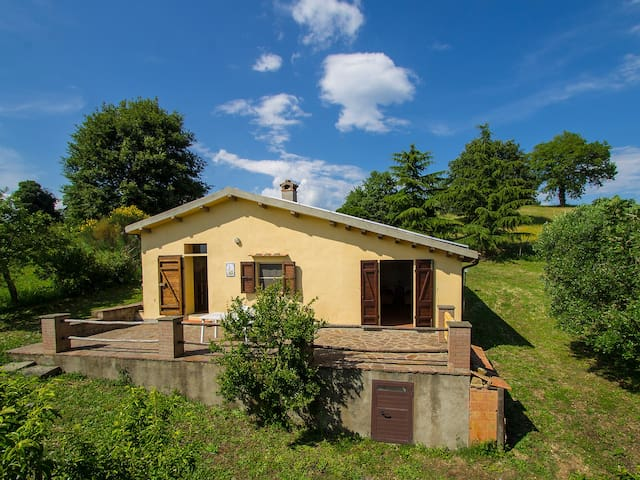 Holiday home Grilli in Scansano