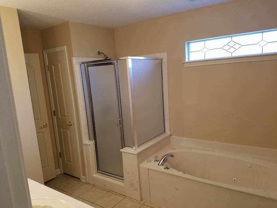 This is the jacuzzi tub and shower