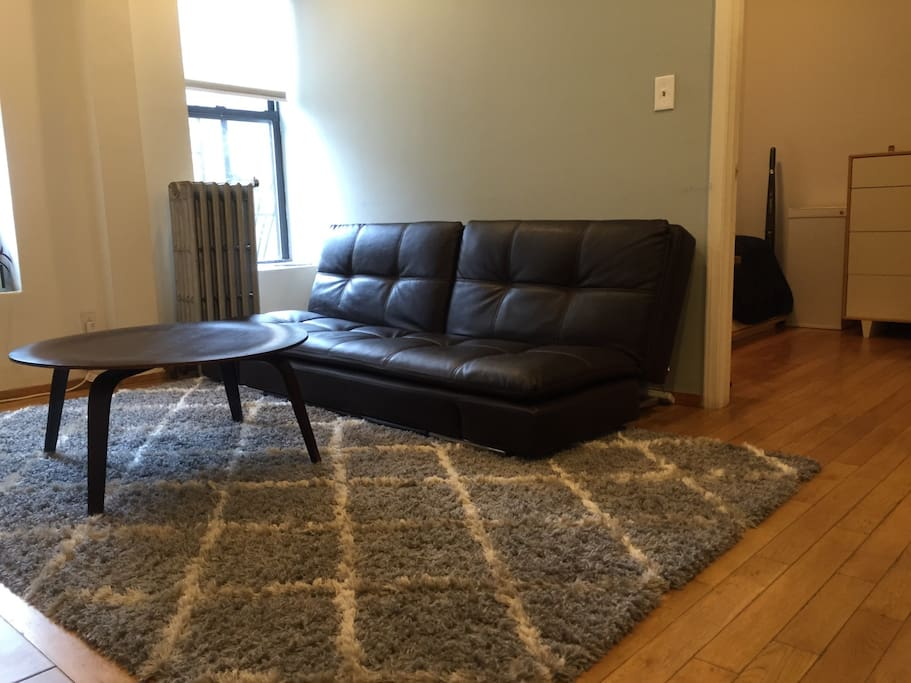 Living room with sofa (converts to bed with sealy Serta mattress)