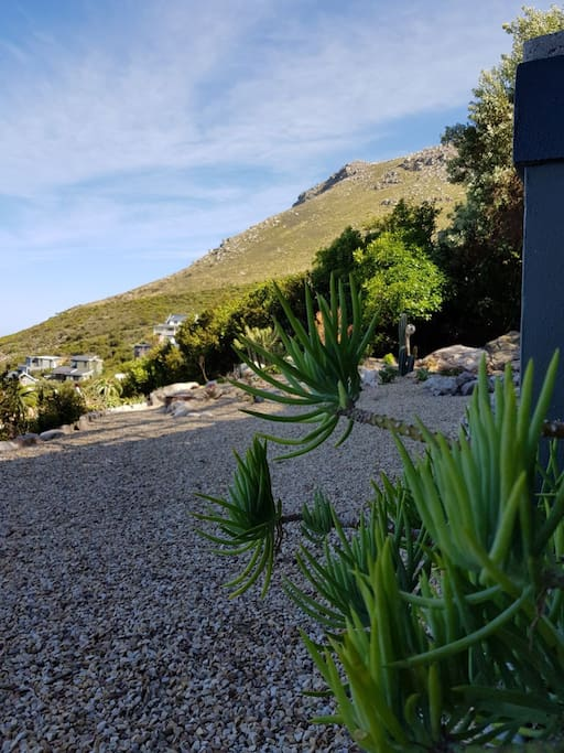 Unobstructed mountain views from the downstairs garden (and from the balcony)!