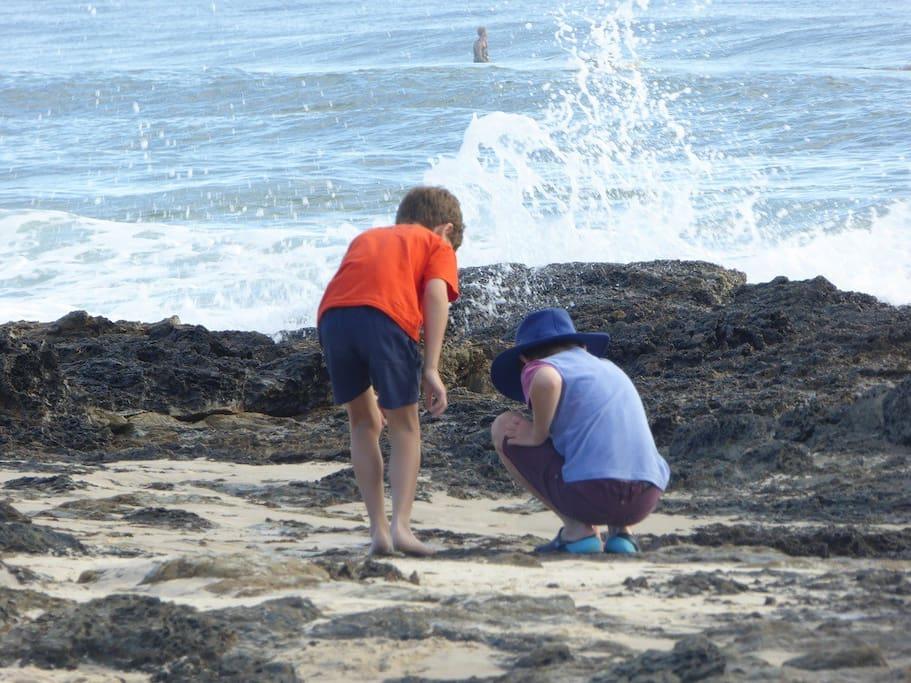 exploring flat rock