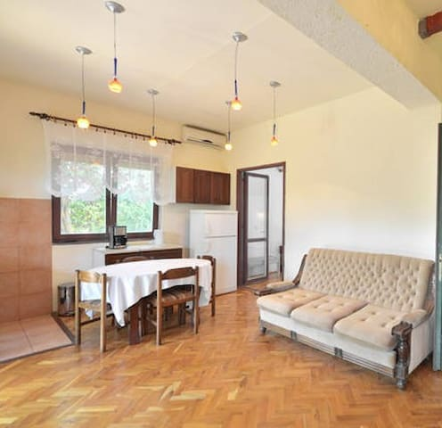 Sunny apartment with garden terrace in Seget donji