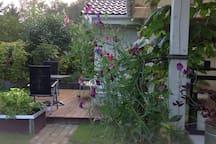 Haven / Garden
