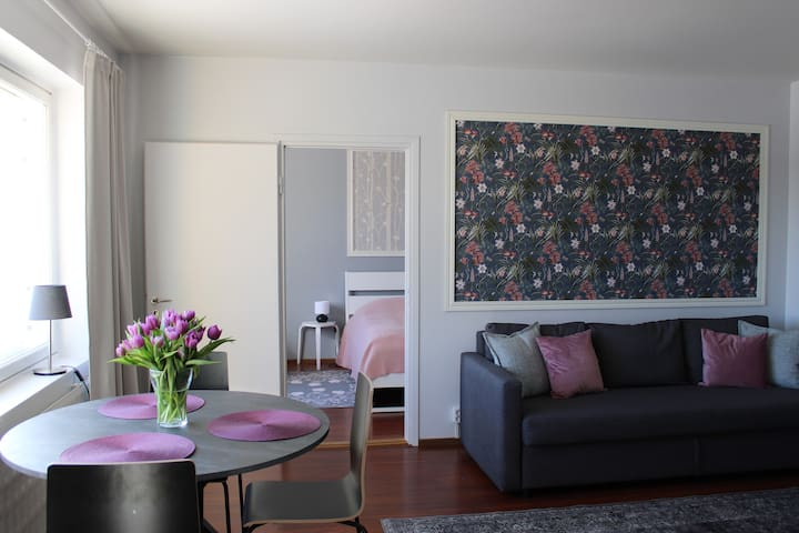 Living room includes a bed sofa, dining table and TV. The living room leads to the bedroom