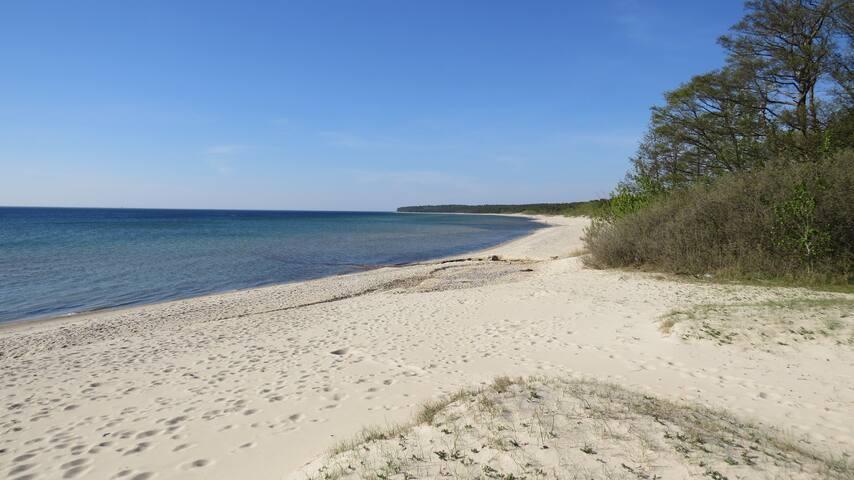 Strandleben 2