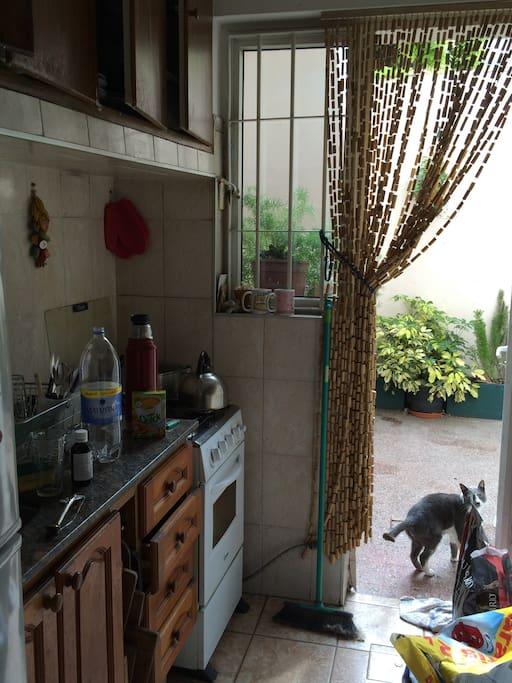 cocina muy calida, con salida a patio con parrillero