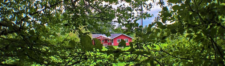 Gedser Naturcenter Værelse 1