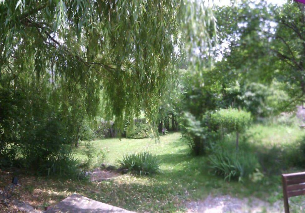 Vue sur jardin depuis la terrasse