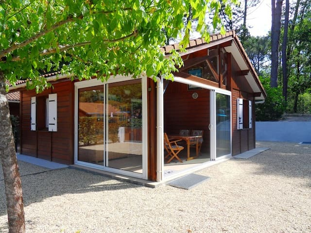 LOCATION 4/6 PERS - BASSIN D'ARCACHON