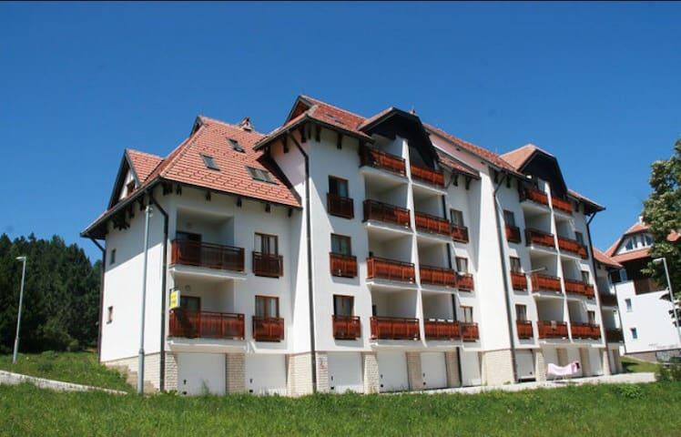 Beautiful apartment. - Zlatibor - Apartament