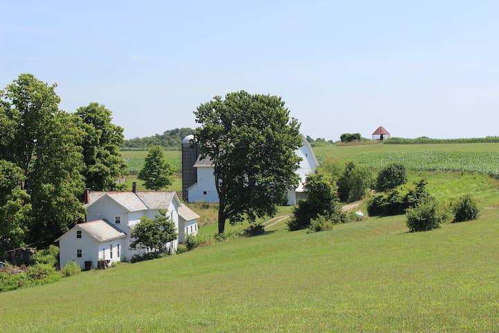 McKee Farmhouse: 230 Acre Coshocton County Farm
