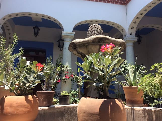 Beautiful House near Santo Domingo Church Oaxaca - Oaxaca - Hus